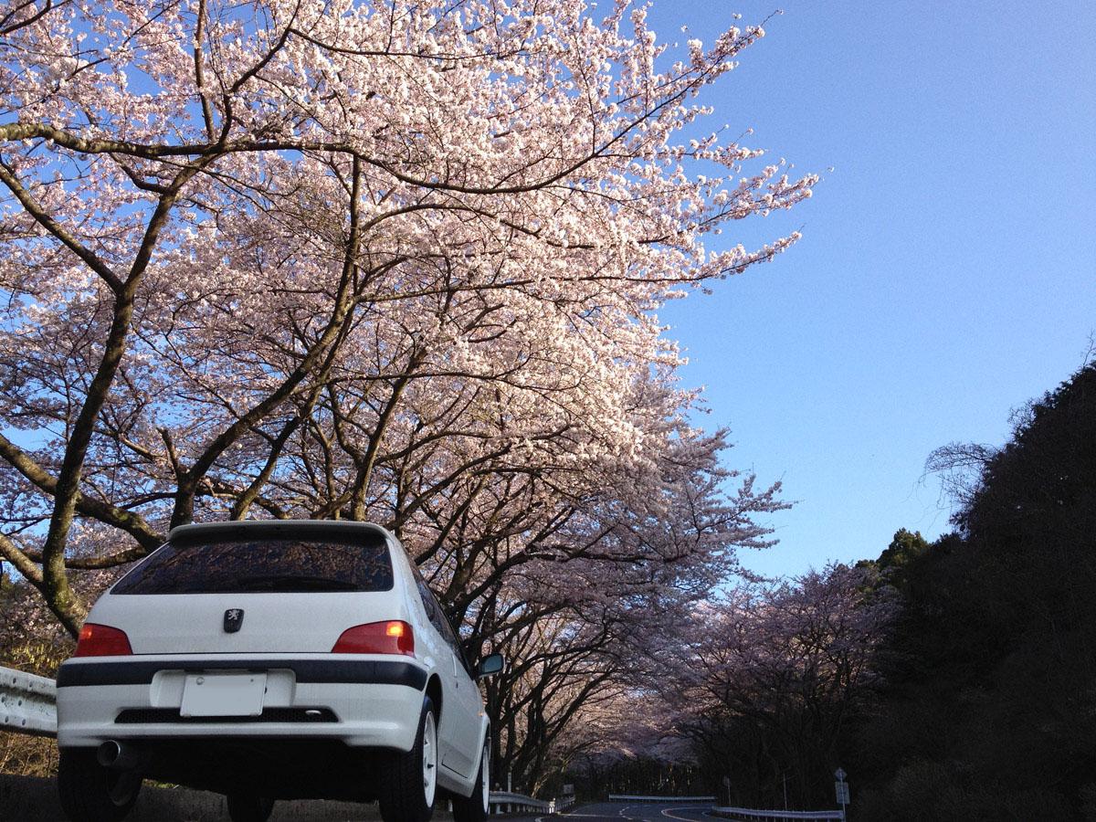 clio_Taiya_Hakone 134