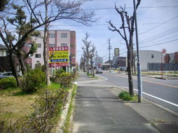 IMGP4467.jpg