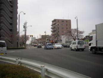 IMGP4481.jpg