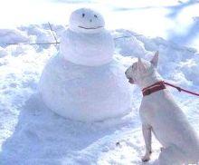 中国の雪だるま