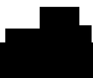 b01-300x250.png