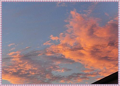 CIMG4758_20120924093902.jpg