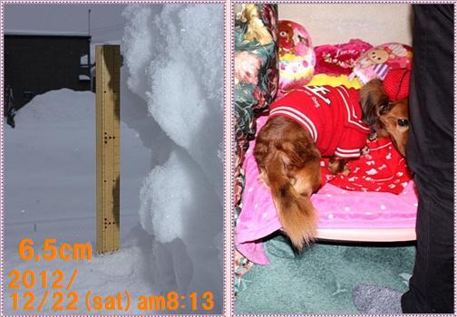 IMG_0223-tile_20121223161553.jpg