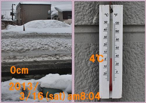 IMG_5063-tile.jpg