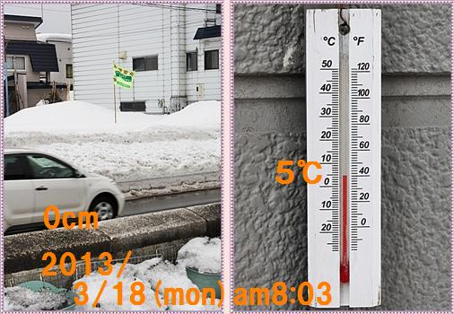 IMG_5216-tile.jpg