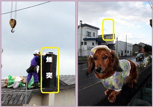 IMG_6682-tile_20121018172605.jpg