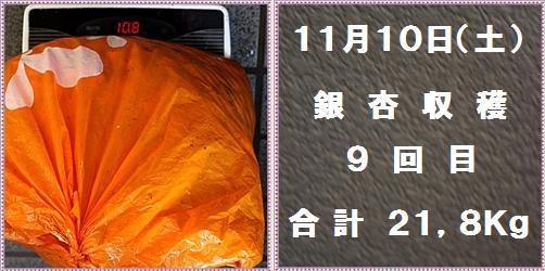 IMG_8305-tile.jpg