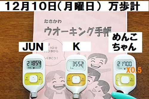 IMG_9691_20121216135247.jpg