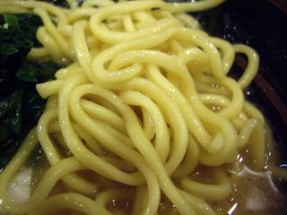 濃厚とんこつラーメン専門店 代々木商店 ラーメン(麺)