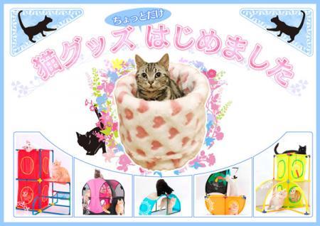 popcat.jpg