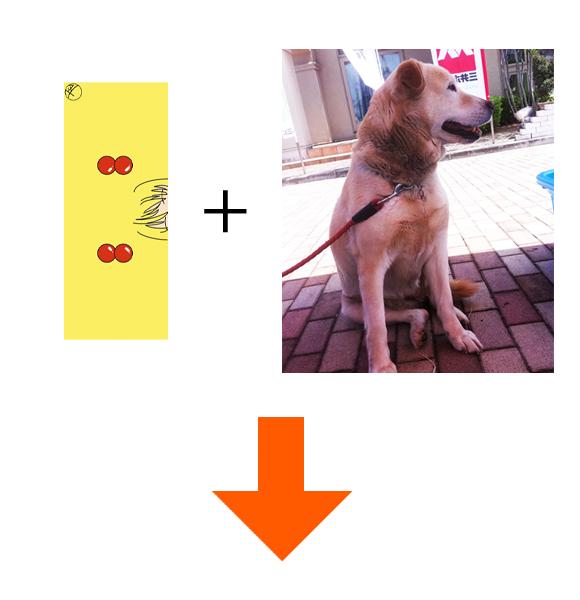 towelanddog.jpg