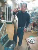 魚太郎のハネ