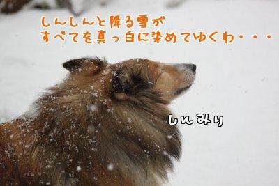 BxpdG.jpg