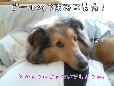 DYMLr.jpg