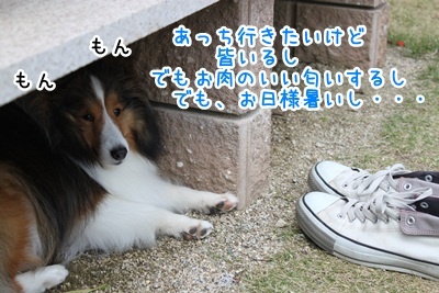 IMG_83735.jpg
