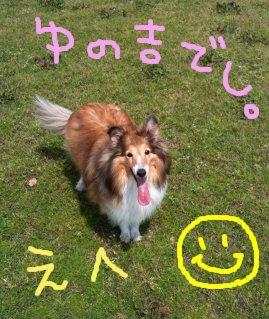 Imageyunokichi1.jpg