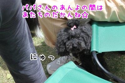 Img_83715.jpg