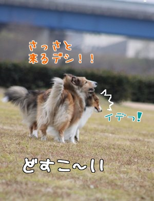 eW_gw.jpg