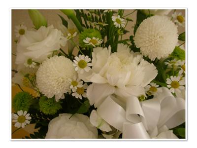 ミリーにお花をありがとう
