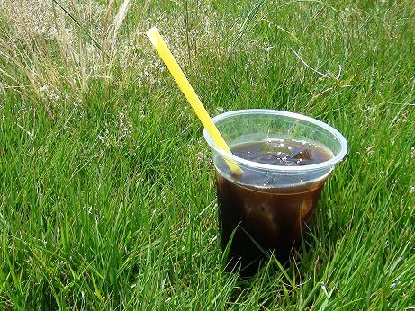 コーヒー芝生3
