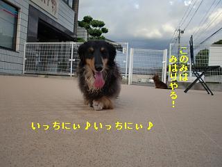 CIMG2496.jpg