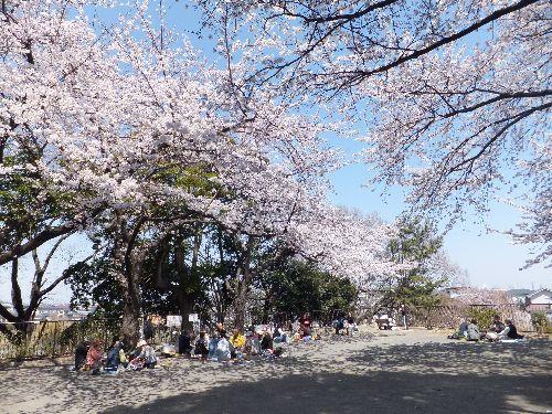 弘明寺公園2