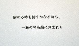 DSC_6046-20110316.jpg