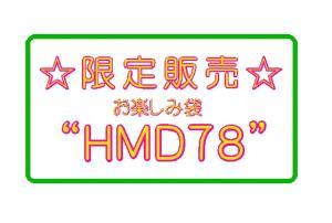 HMD78.jpg