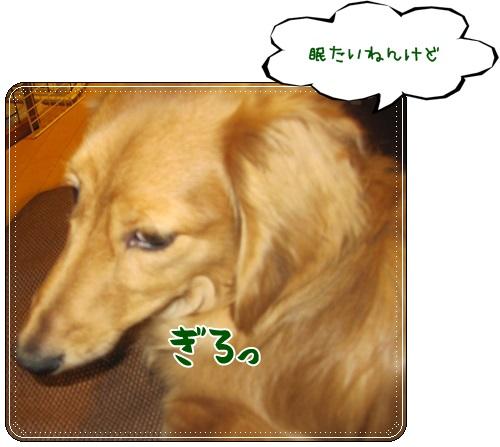 006_20130410225133.jpg