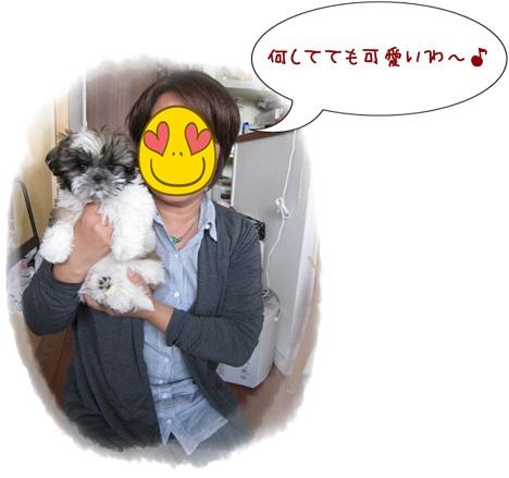 006_20130419201158.jpg