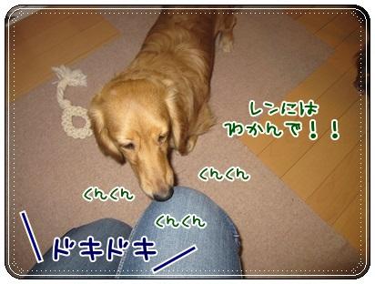 007_20130330105543.jpg