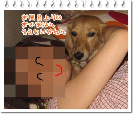 009_20130520230329.jpg