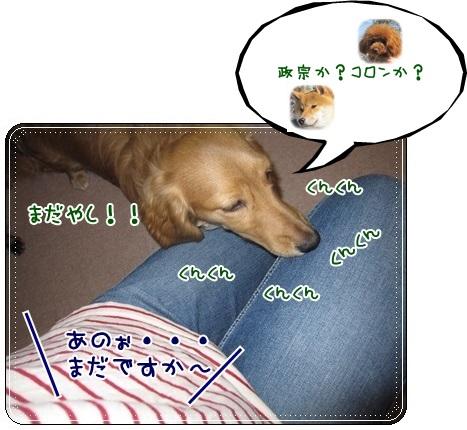 011_20130330105545.jpg