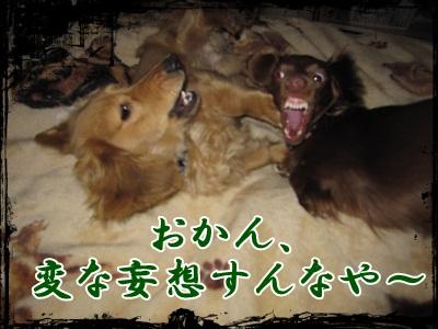 014_20130220180534.jpg