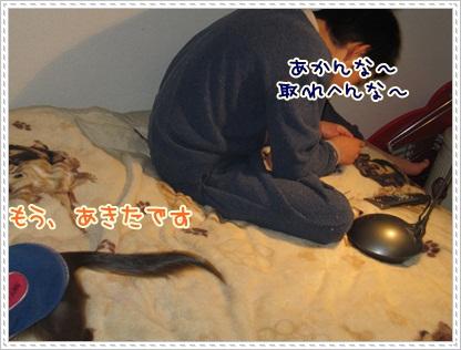 018_20130130155908.jpg