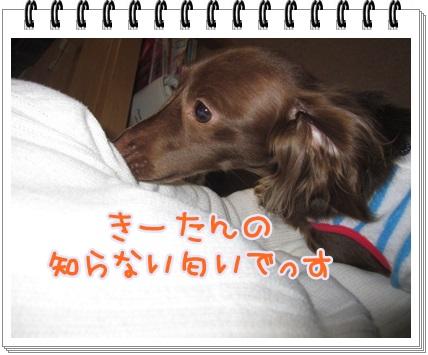 018_20130419201425.jpg