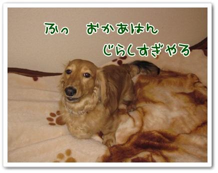 019_20130310120426.jpg