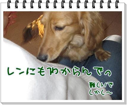 021_20130419201517.jpg