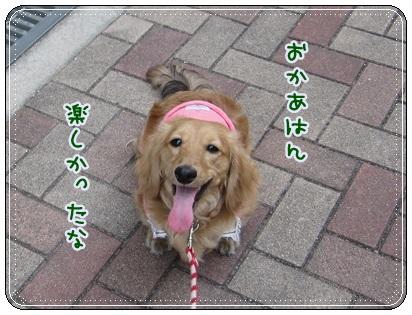 022_20130506165437.jpg