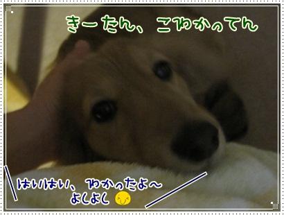 029_20130126205848.jpg