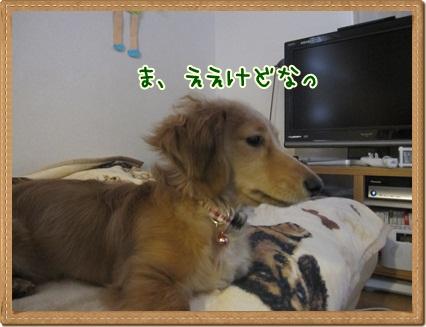 044_20130127125019.jpg
