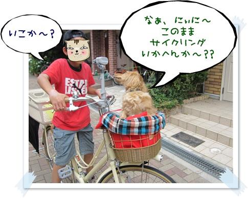 051_20130602161219.jpg