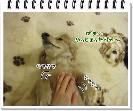 062_20130207204645.jpg