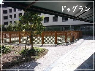 dappleback cafe/神奈川県/はるひ野駅