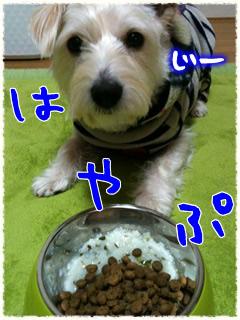 ぷーちゃんも七草粥