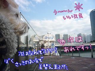 横浜BayQuarterだっ!