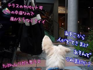 INOW/自由が丘/東京