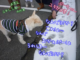 那須岳峠で初雪