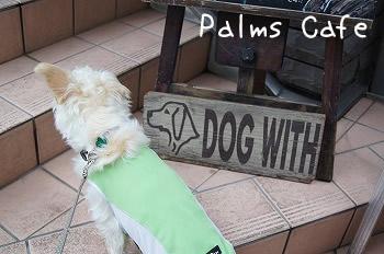 自由が丘「Palms Cafe」