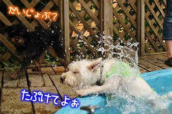 プールから出れない助けて